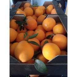 Pack Raf & Naranjas