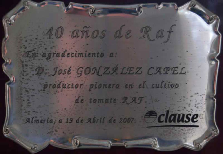 Placa conmemorativa aniversario del Raf.