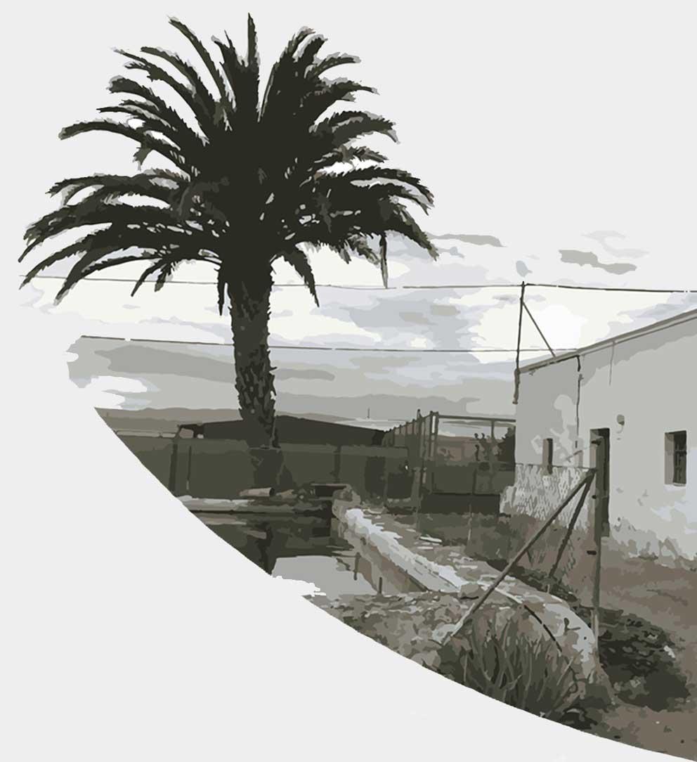 Cortijo de Los Vegueros