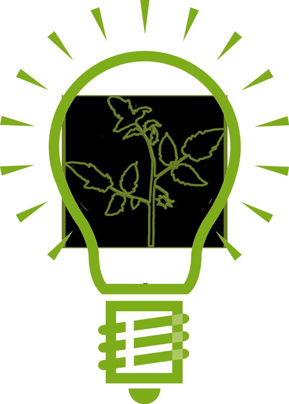 pepeRaf comprometido con el ahorro energético en sus cultivos
